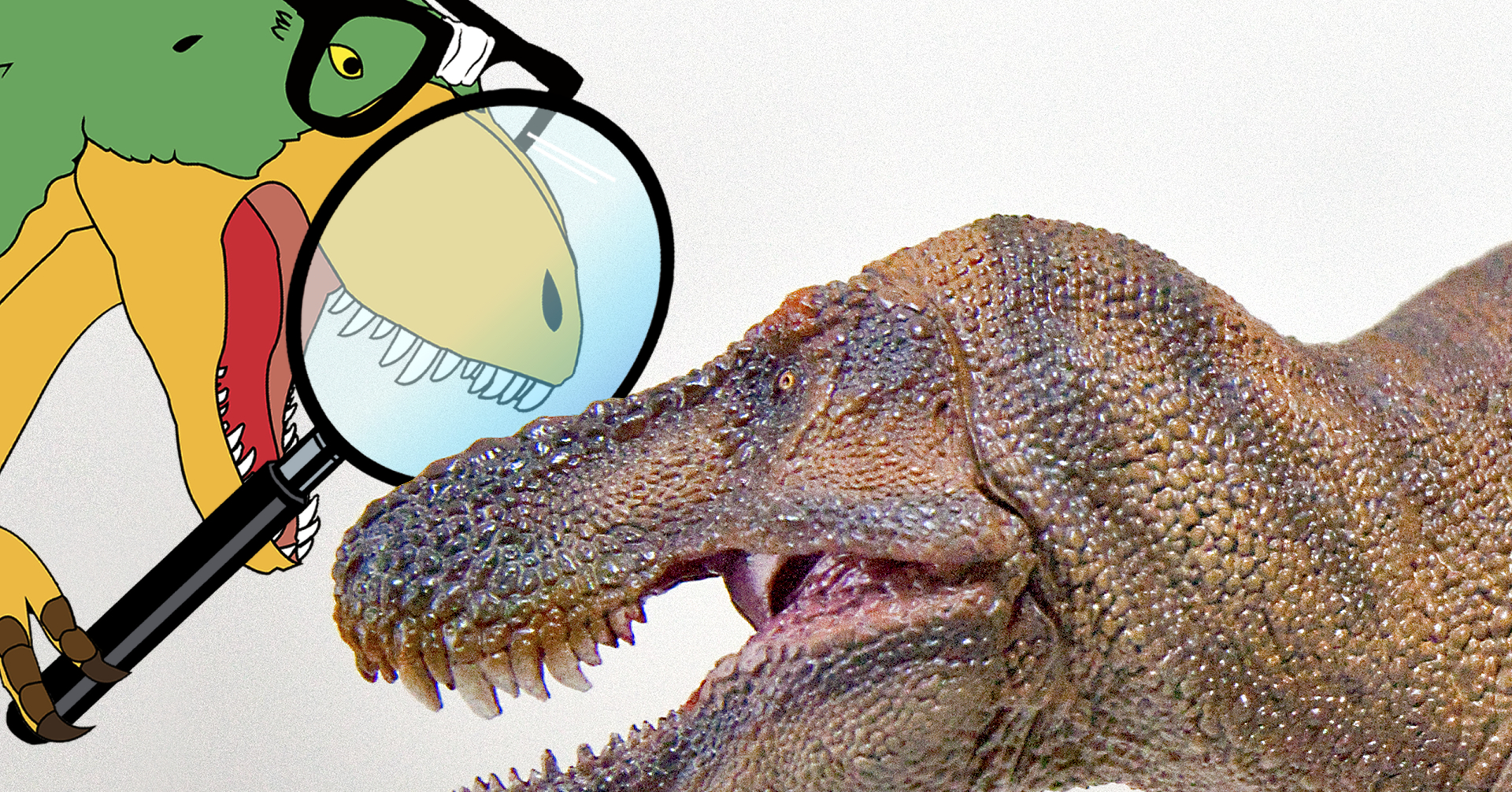 PNSO: Tyrannosaurus rex (2020)