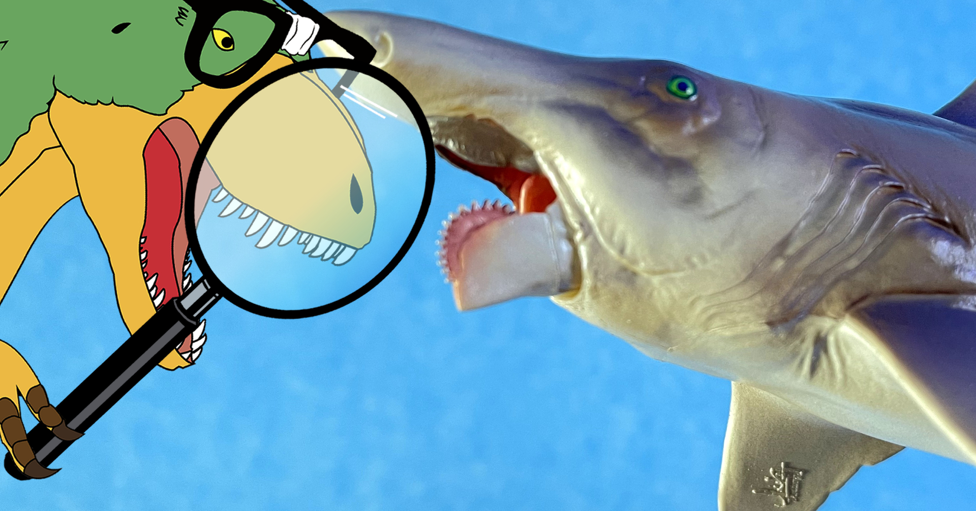HELICOPRION (PNSO, 2021)