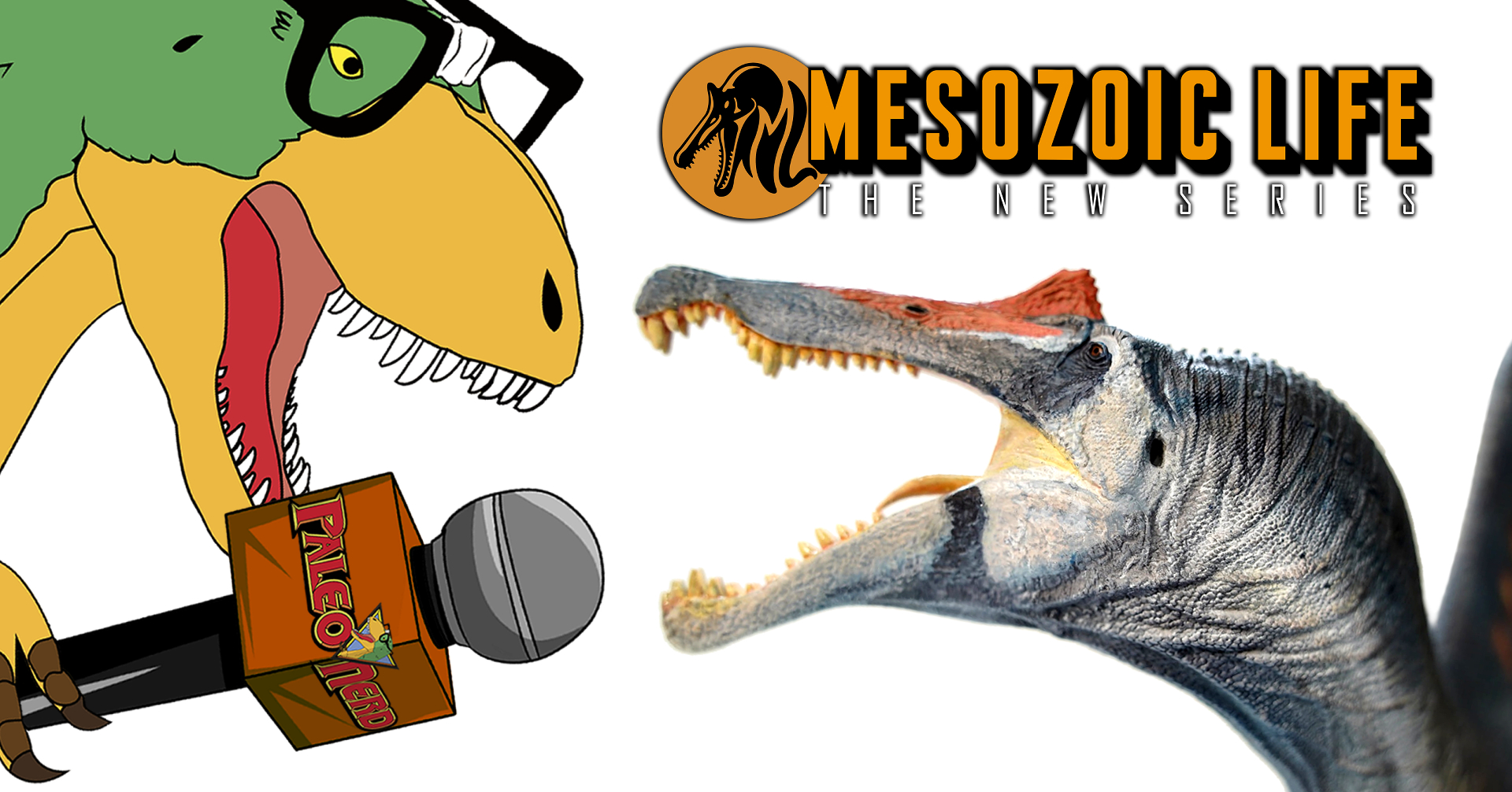 MESOZOIC LIFE PROJECT: Interview with Kevin Miguel